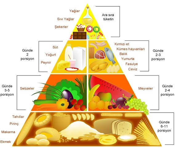 besin piramidi, besin piramidi nedir, besin piramidi şekli